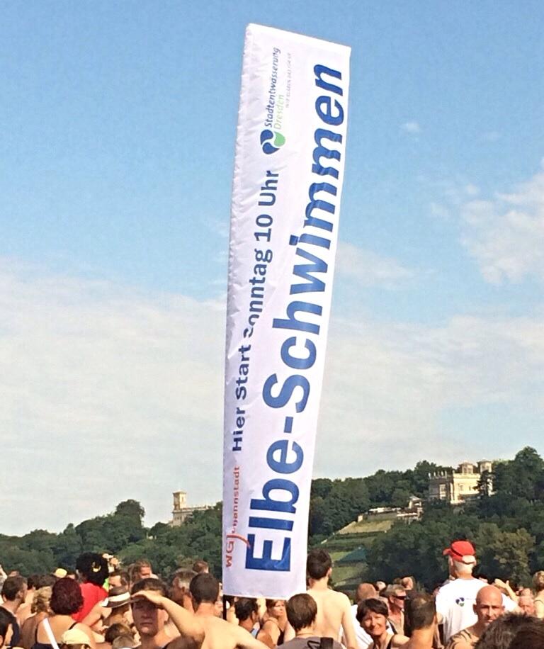Elbeschwimmen-Dresden-01