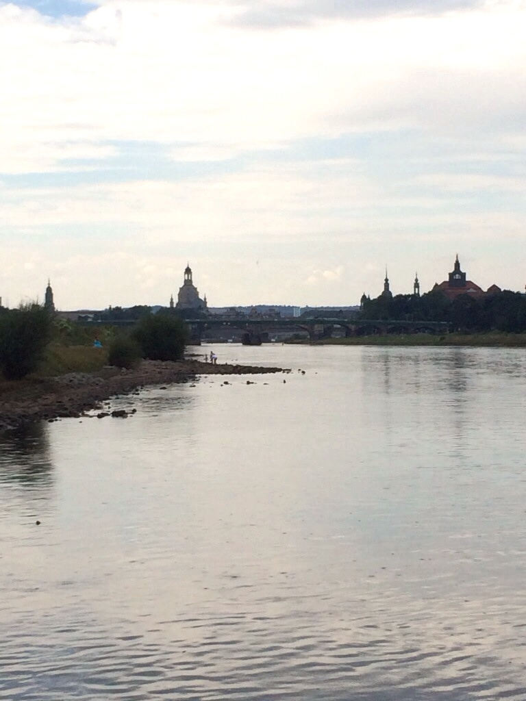 Elbeschwimmen-Dresden-06